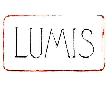 Logo de Lumis, entreprise de mise en relations d'hommes d'affaires